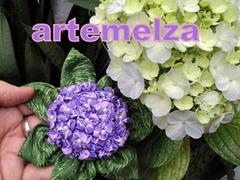 artemelza - hortensia de fuxico